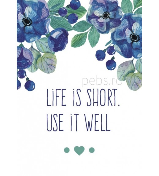 Life is Short, Use It Well. Felicitare