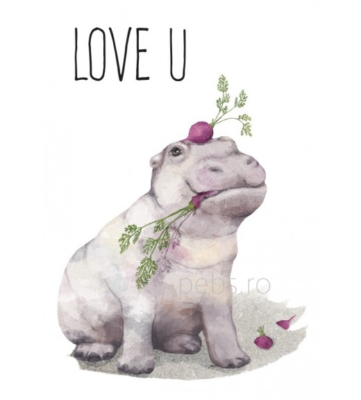 Hippo Love. Giftcard