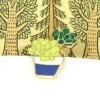 Sedum Succulent  Blue Pot