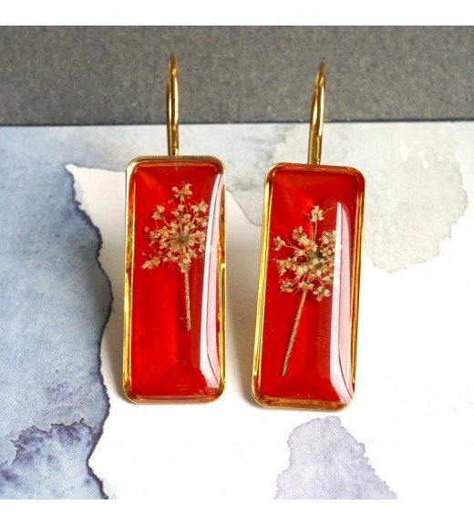 Daucus carota - Dantela Reginei. Gold Plated