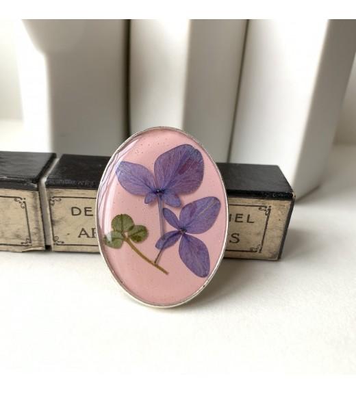 Hydrangea sp. - Hortensie. Pale Pink