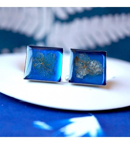 Hydrangea sp. - Nervuri de Hortensie. Mirror Blue imagine