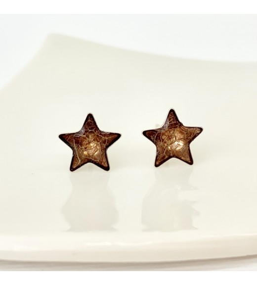 Physalis alkekengi - Winter Cherry. Amber Stars
