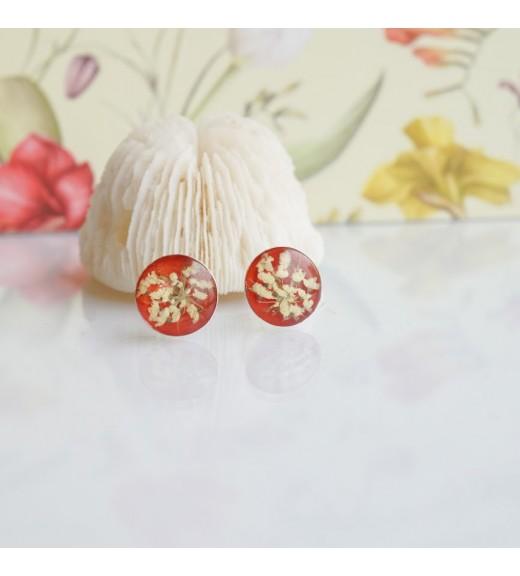 Daucus carota - Floare de Morcov Sălbatic. Pearl Brick Red imagine