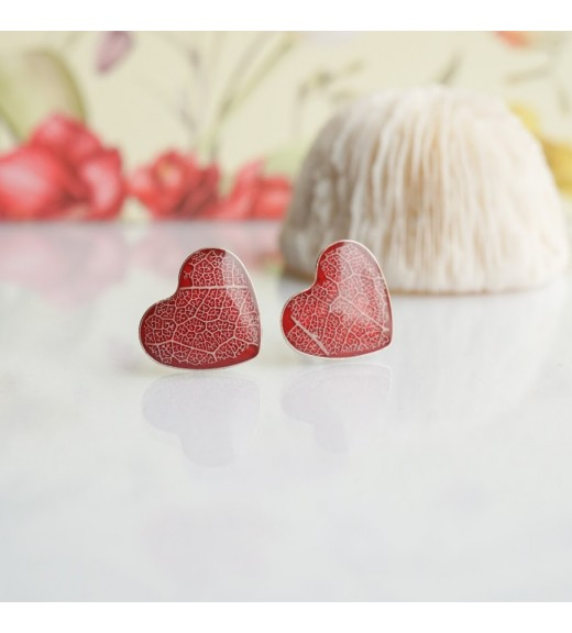 Tilia tomentosa - Silver Linden Veins. Red Hearts