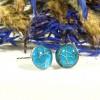 Physalis alkekengi. Nervuri De Lampion Japonez. Glittering Blue imagine