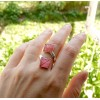 Tilia tomentosa - Nervuri De Frunză De Tei. Red & Pink