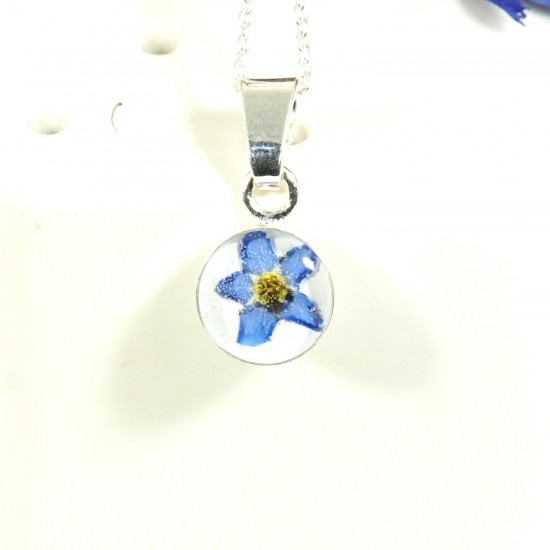 Silver pendant with a real forget me not flower myosotis sylvatica forget me not flower pendant aloadofball Image collections