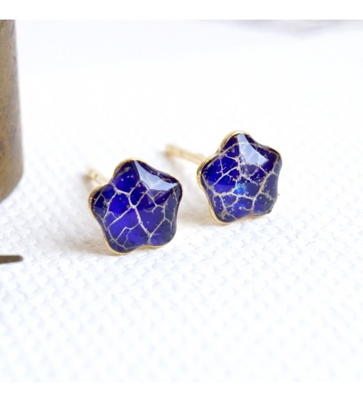 Physalis alkekengi - Nervuri De Lampion Japonez. Royal Blue Flowers