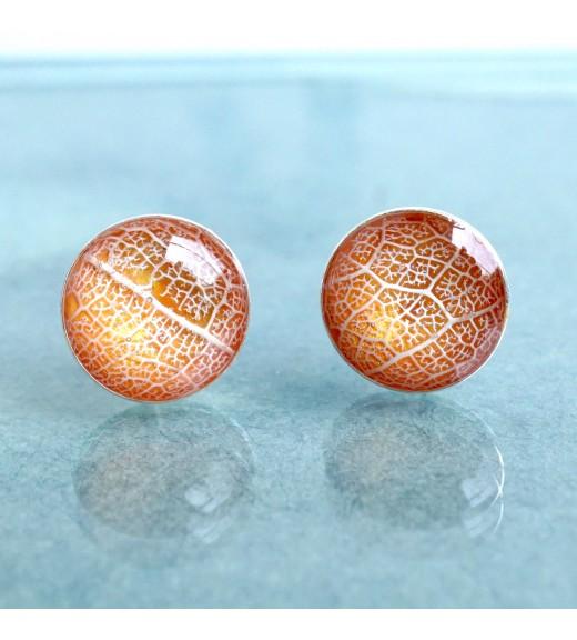Tilia tomentosa - Nervuri Tei Argintiu. Pearly Peach