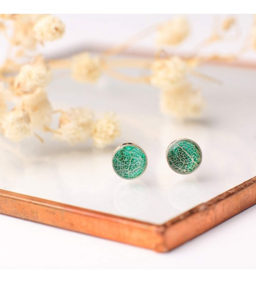 Tilia tomentosa - Tei Argintiu. Verde Smarald
