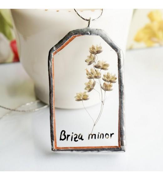 Terrarium Pendant - Briza minor